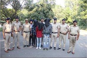 in chandigarh and panchkula fake numbers were used for snatching 3 arrested