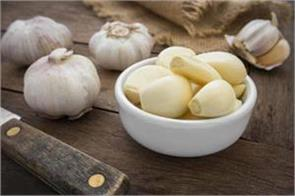 garlic spoiled the taste of food price of rs 300 a kg