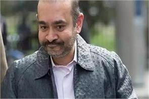 nirav modi will remain in jail custody extended till november 11