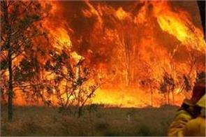 13 firefighters scorched australian bushfires