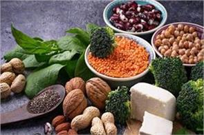 protein diet for vegetarian people