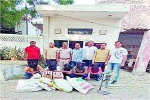 205 cases of illegal liquor seized 5 accused arrested