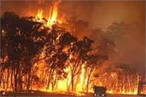 two people died in australian forest fire