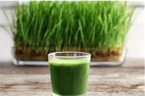 wheat grass juice will beat serious pollution
