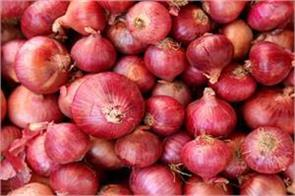 government will import 1 2 lakh metric tons of onion rein in the rising prices