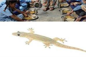 50 students sick after finding lizards in mid day meal