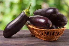 brinjal is very beneficial from weight loss to diabetes away