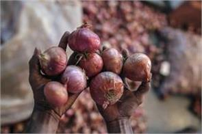 new crop of onion will come after january 15