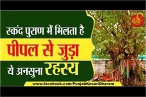 this unheard mystery related to peepal tree in skanda purana