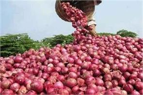 onion can be cheaper from next week