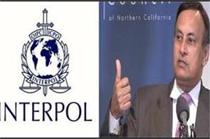 interpol again refuses to extradite haqqani