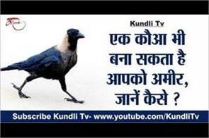 a crow can also make you rich know how