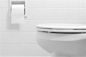 brisbane family finds python inside home toilet