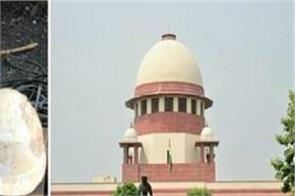 sc asked government why not yet saved laborers