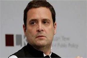 rahul gandhi congratulates taylor son on top of ca