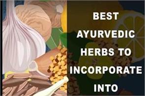 ayurvedic herbs to add into your daily life
