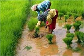 will the farmers become the farmers the way to reach