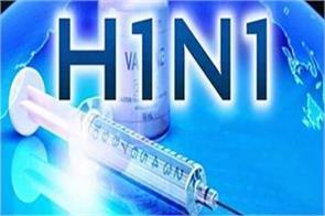 about 1100 cases of swine flu in delhi