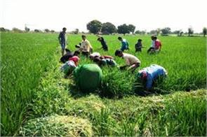 money will come into accounts of 10 million farmers by march