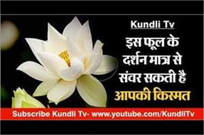according to astrology white lotus benefits