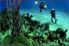study reports climate change is a big threat for underwater forests