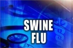 swine flu continues in gujarat more than 65 deaths