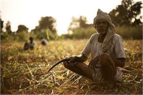 punjab government approved loan relief scheme for agricultural laborers