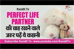 perfect life partner