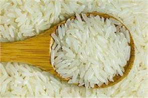 basmati rice export likely to increase by 4 5 in next financial year report