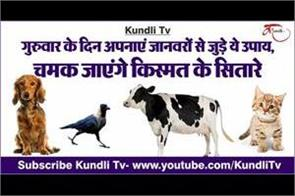 jyotish upay related to animals for thursday