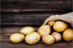 potato prices rise by festive demand and rain