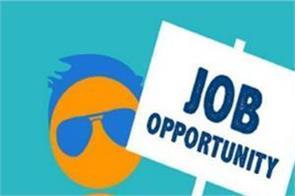 department of animal husbandry  job salary candidate