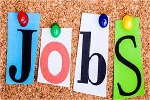bhel jobs  salary candidate job news in hindi rojgar samachar