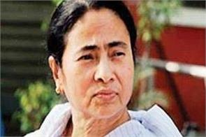 mamata banerjee says tmc will win all the lok sabha seats