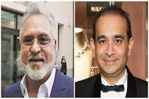 not only mallya nirav modi 36 businessman absconding from country ed
