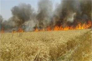 up fire erosion in 3 districts including hardoi