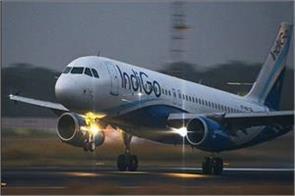 indigo pilot harassed to cabin crew in cockpit