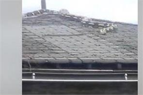 an 18 foot long python escaped captivity and climbed onto a roof