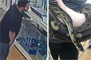 cctv footage captures man stealing python by putting it in his pants