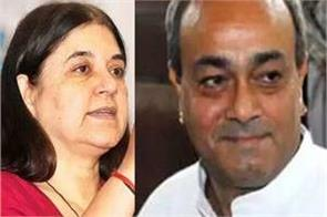 maneka gandhi and sanjay singh will be interesting in the fight