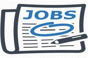 hssc  job news in hindi rojgar samachar government jobs  employment news