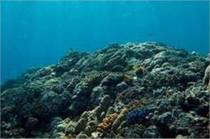 indian subcontinent collision with asia boosted oxygen in world s oceans
