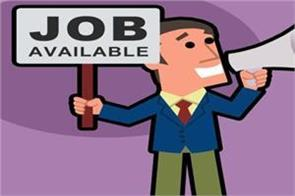 fact job  job news in hindi rojgar samachar government jobs
