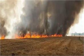 the sudden fire in the fields