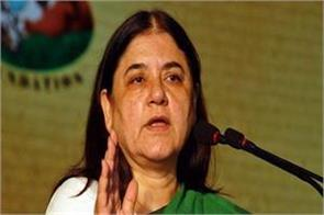 coincidence taken by the election officer on maneka s objectionable speech