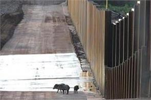 mexico boundary wall  will be trouble and loss for environment
