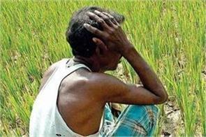 so will 26 million farmers decide the future of the nda and the upa