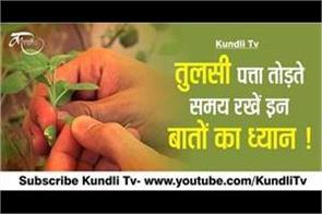 keeping the tulsi leaf breaks the attention of these things