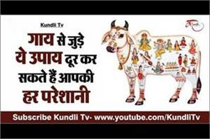 do this remedy related to cow