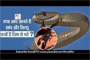 do you know why snakes and scorpions are filled with poison